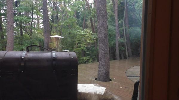 宝箱は雨の日にライブラリーカフェの前に出現します。ゲームみたいですね(笑)