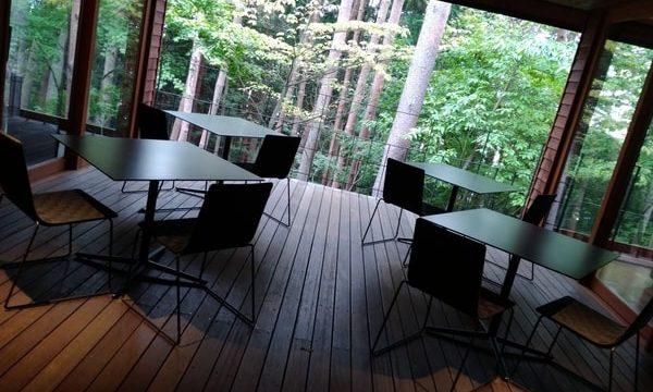 フロント前のテーブル。撮影は昼間。雨の日の夜はこんなところでハーブティーを飲めるんでしょうか