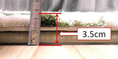 ルンバは置き畳+カーペットの高さを超えられるのか?